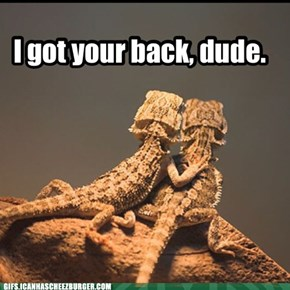 I got your back, dude.