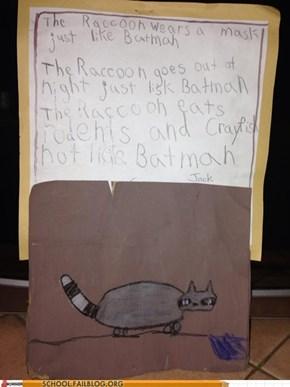 The Raccoon Is Almost Batman