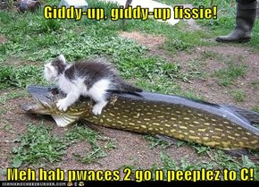 Giddy-up, giddy-up fissie!  Meh hab pwaces 2 go n peeplez to C!