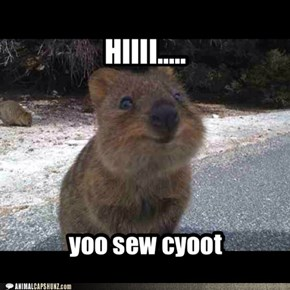 HIIII.....so cute