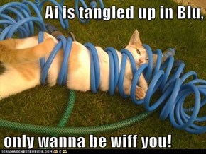Ai is tangled up in Blu,  only wanna be wiff you!