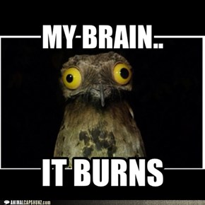 MY BRAIN..it burns!