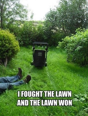 The Grass is Always Nicer on the Other Lawn