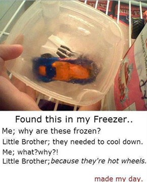 Don't You Read the Instructions? Freeze Before Play