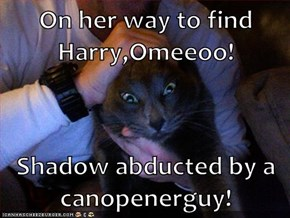 On her way to find Harry,Omeeoo!  Shadow abducted by a canopenerguy!