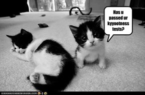 Yeah, we has tests.