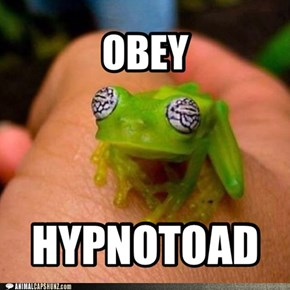All Hail Hypnotoad!