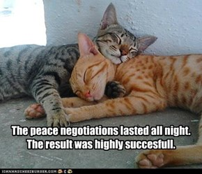 The peace negotiations lasted all night.