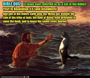 Is Jesus a LOLCat?