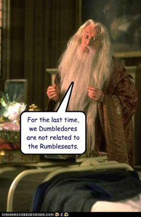 For the last time, we Dumbledores are not related to the Rumbleseats.