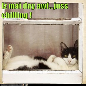 Iz mai day awf...juss chilling !