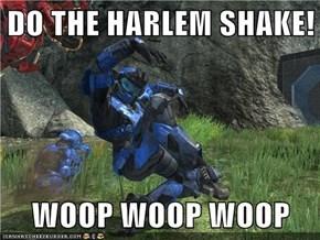 DO THE HARLEM SHAKE!  WOOP WOOP WOOP
