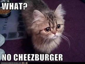 WHAT?  NO CHEEZBURGER