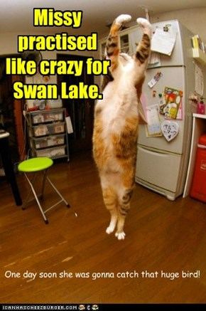 Missy practised like crazy for Swan Lake.