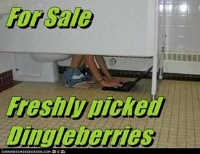 For Sale  Freshly picked Dingleberries