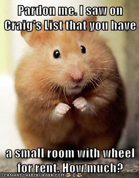Pardon me. I saw on Craig's List that you have  a small room with wheel for rent. How much?