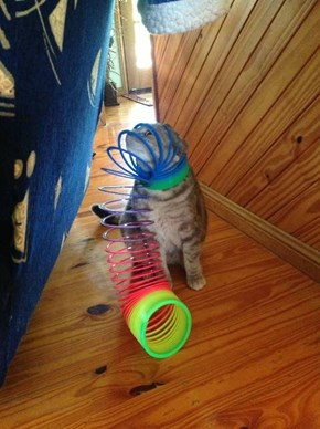 You Win This Time, Slinky