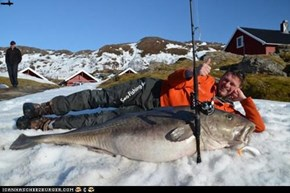 German catches Record 103lb Norwegian Cod