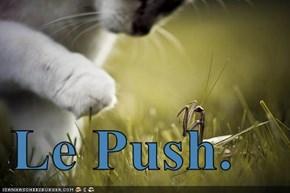 Le Push.