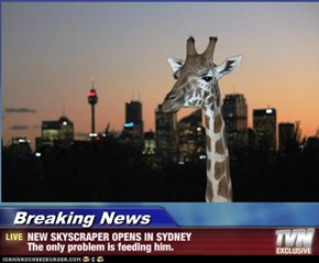 Breaking News - NEW SKYSCRAPER OPENS IN SYDNEY The only problem is feeding him.