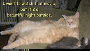 I want to watch that movie, but it's a  beautiful night outside.