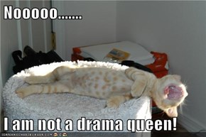 Nooooo.......  I am not a drama queen!