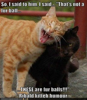 "So, I said to him, I said... ""That's not a fur ball...  ...THESE are fur balls!!!"".                     Ribald kitteh humour."