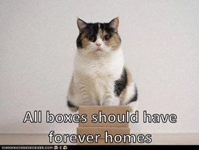 All boxes should have forever homes