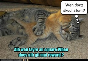 Aih won fayre an square.When does aih git mai reward ?