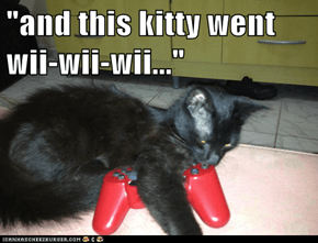 """and this kitty went wii-wii-wii..."""