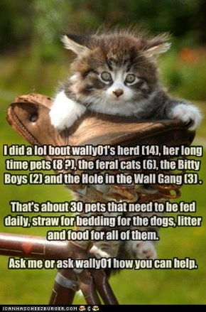I did a lol bout wally01's herd (14), her long time pets (8 ?), the feral cats (6), the Bitty Boys (2) and the Hole in the Wall Gang (3) .  That's about 30 pets that need to be fed daily, straw for bedding for the dogs, litter and food for all of them.  A