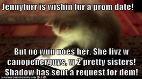 Jennyfurr is wishin fur a prom date!  But no wun noes her. She livz w canopenerguys, w 2 pretty sisters!  Shadow has sent a request for dem!