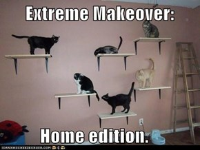 Extreme Makeover:            Home edition.