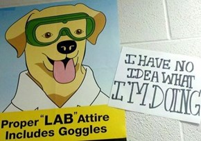 How Me a Lab Learn Lab Safety?