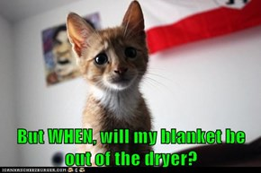 But WHEN, will my blanket be out of the dryer?