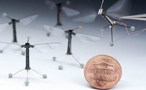 The Smallest Flying Robots
