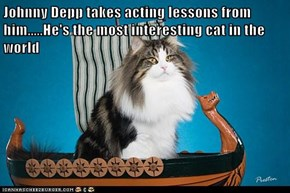Johnny Depp takes acting lessons from him.....He's the most interesting cat in the world