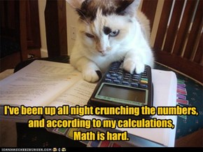 I've been up all night crunching the numbers,