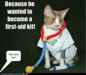 Why did the cat go to medical school?