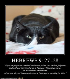 HEBREWS 9: 27 -28