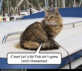 C'mon! Let's Go! Fish ain't gonna catch themselves!