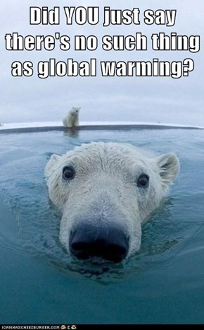Did YOU just say there's no such thing as global warming?