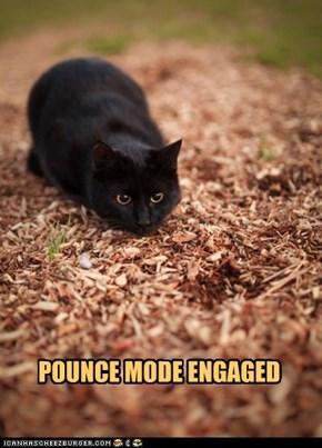 POUNCE MODE ENGAGED