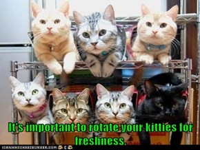 It's important to rotate your kitties for freshness.