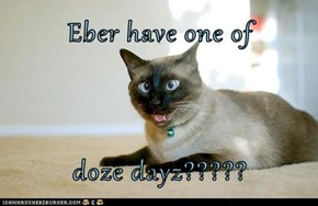 Eber have one of  doze dayz?????