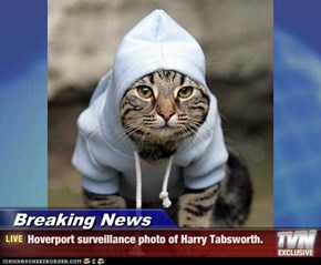 Breaking News - Hoverport surveillance photo of Harry Tabsworth.