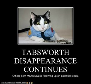 TABSWORTH DISAPPEARANCE CONTINUES