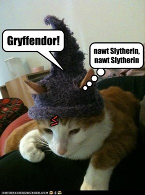 Hairy Pawter adn Teh Sorting Hat