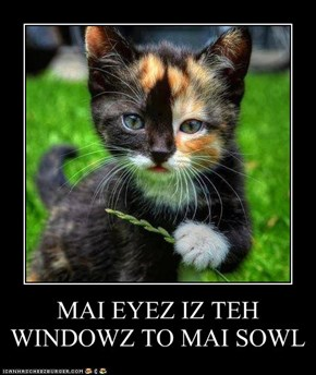 MAI EYEZ IZ TEH WINDOWZ TO MAI SOWL