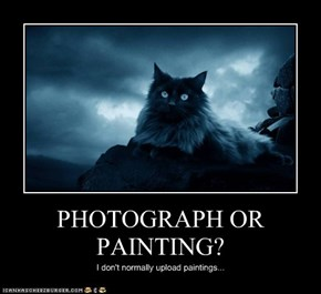 PHOTOGRAPH OR PAINTING?